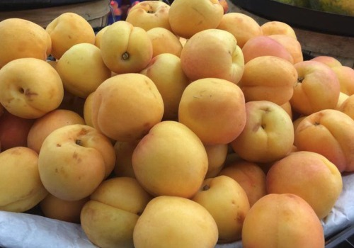 Click to view more Apricots Produce