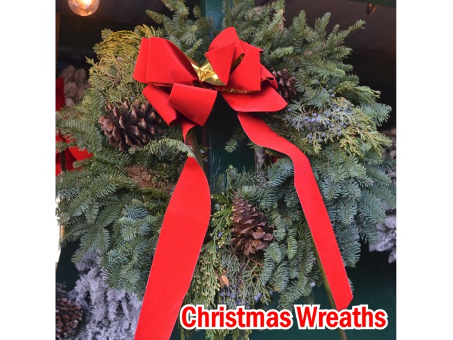 Green Noble Fir Christmas Wreaths