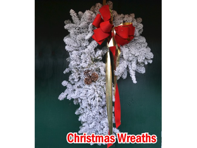 Candy Cane Noble Fir Christmas Wreaths